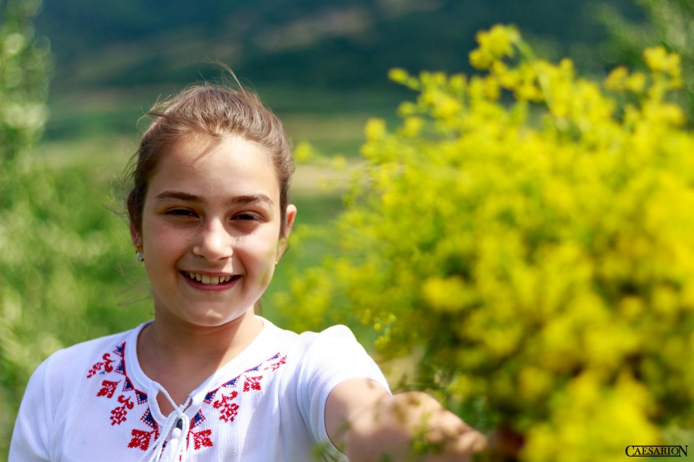 Sanziene (14)