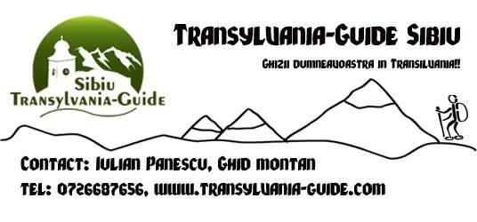 banner-iulian-panescu3